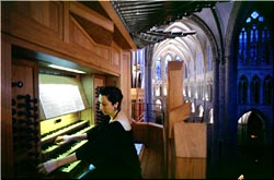 Organ Concert at Brussels Cathedral